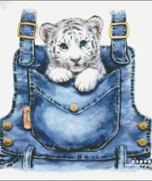 HAE-Pocket White Tiger(350×378)