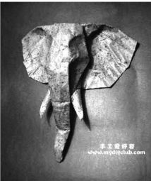 Elephant Head ( Roman Diaz )大象