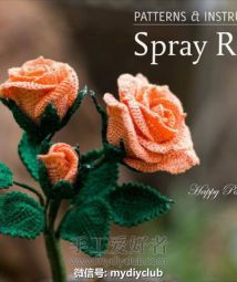 Spray_Rose